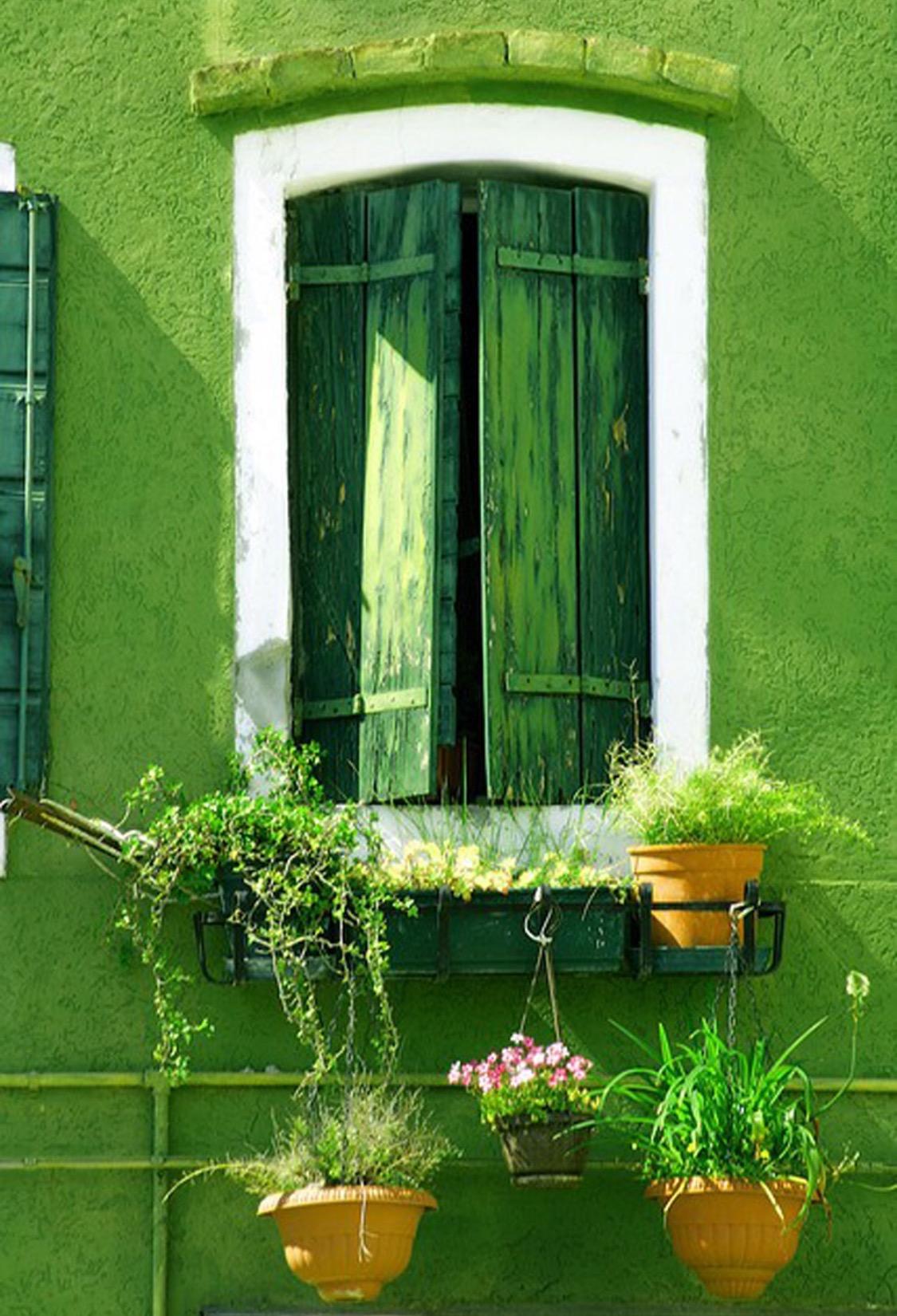Greenery wall paint